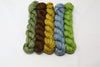 Groupie Skinny Mini Set of 5 Worsted Weight