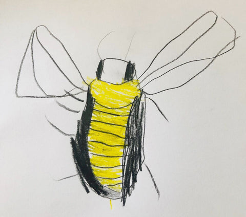 colourful bee nature drawing