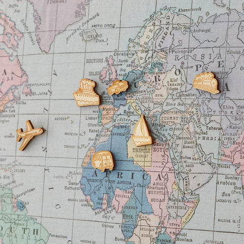 world map travel tracker pins