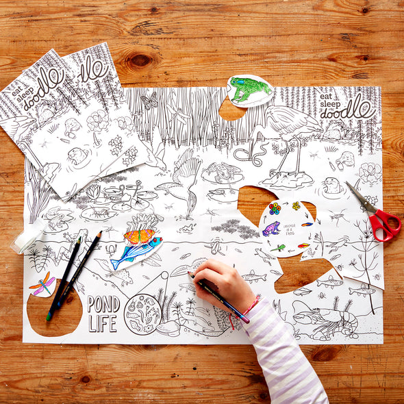 colouring pond theme activity