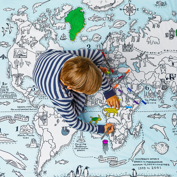world map print bedding