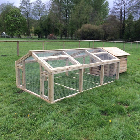 chicken run 12ft x 30inch