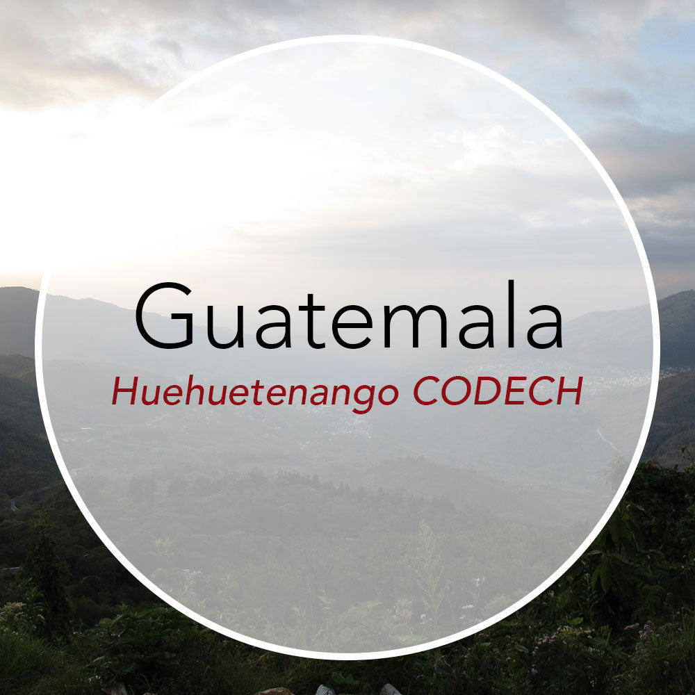 Newest Offering: Guatemala Huehuetenango CODECH
