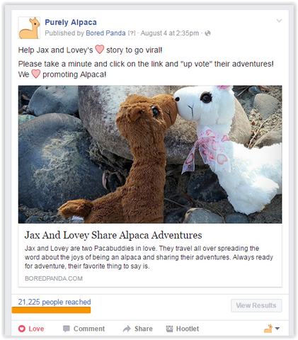 Purely Alpaca on Facebook Bored Panda