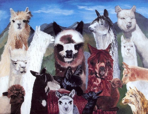 Alpaca Collage Print - Purely Alpaca