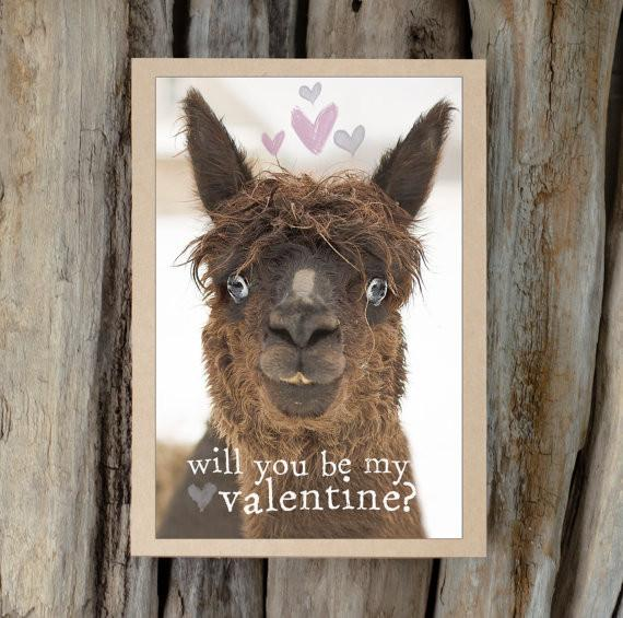 Alpaca Greeting Card - Will You Be My Valentine