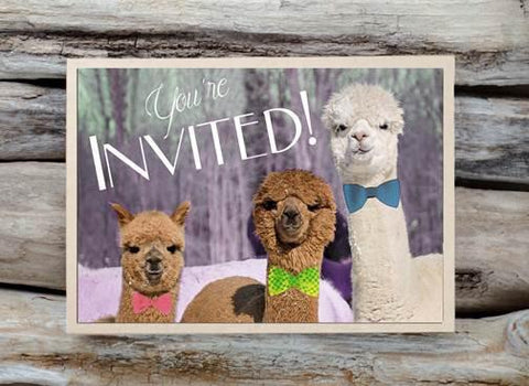 Alpaca Greeting Card - You're Invited - Purely Alpaca