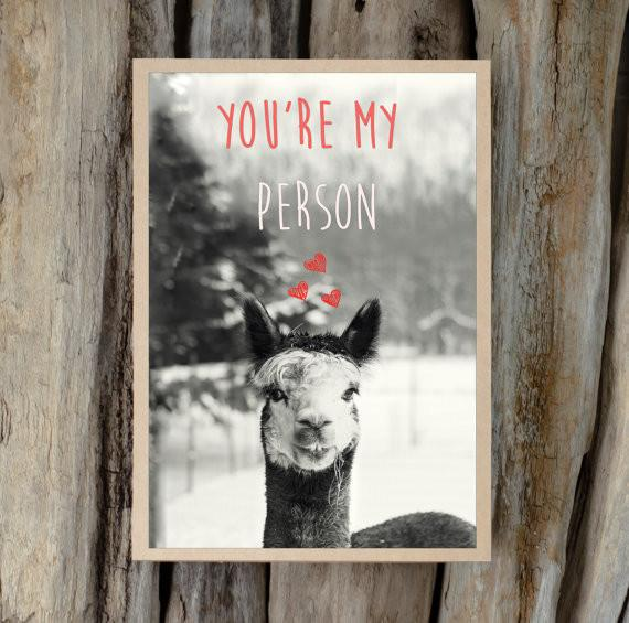 Alpaca Valentine's Day Greeting Card - You're My Person