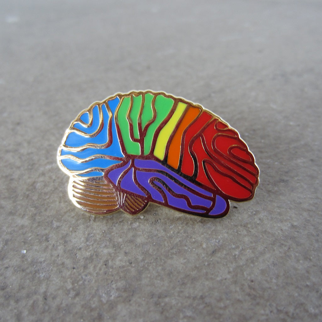 Enamel Brain Pin: Rainbow