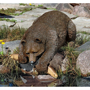 Catch of the Day Grand Lifelike Bear Sculpture for Pool Edge 33W