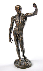 Anatomical Study of Flayed Male Man Anatomy L'ecorche Statue by Houdon 10H