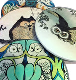 Owl Paintings Glass Drink Bar Coffee Table Coasters Set of 4 with Storage Stand