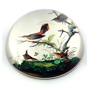 Birds Winter Wrens in Tree Glass Paperweight by J.J Audubon 3W