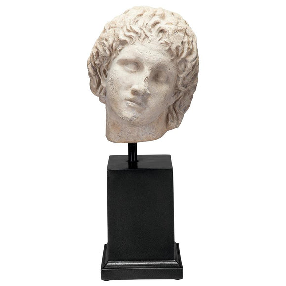 Alexander the Great Portrait Sculpture Bust on Museum Mount 24H