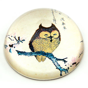 Owl on Magnolia Branch Japanese Woodblock Glass Dome Paperweight 3W