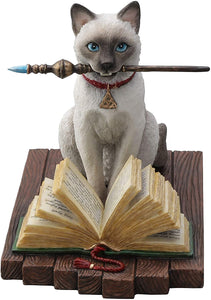 Cat Casting Magic Spell from Spell Book Hocus Pocus Statue by Lisa Parker 5.25H
