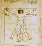 Museumize:Vitruvian Universal Man Image of Perfection Statue by DaVinci White, Assorted Sizes