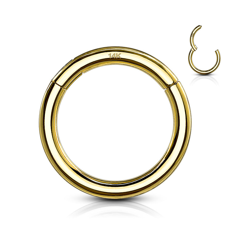Yellow 14k Gold Hinged Segment Ring