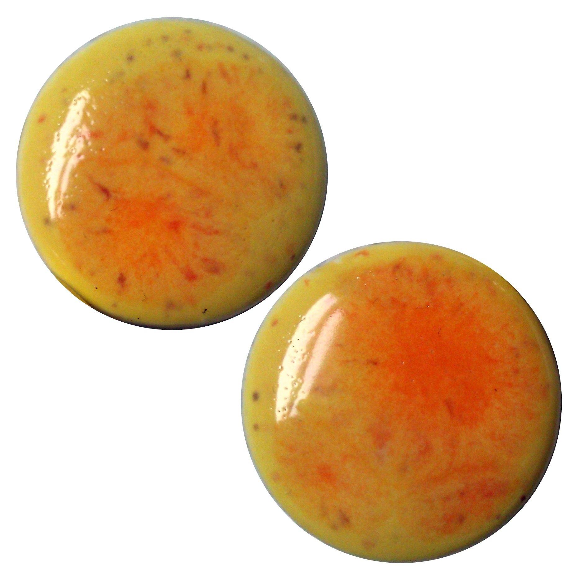 Citrus Splash Ceramic Plugs