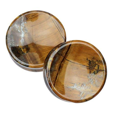 "Plugs - 2"" Tiger Eye Concave Plugs By Evolve Jewelry"
