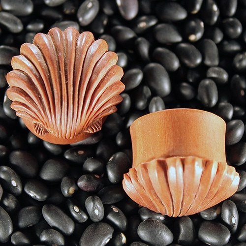 Ariel's Shell Plugs by Urban Star Organics