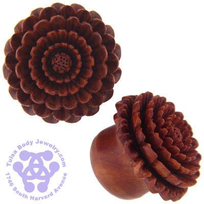 Chrysanthemum Plugs by Urban Star