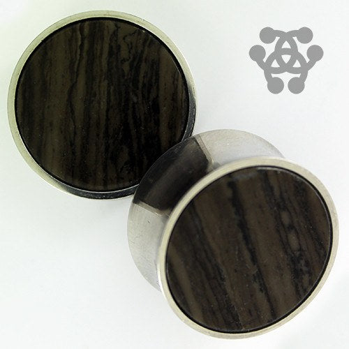 Fossil Wood & Stainless Steel Plugs