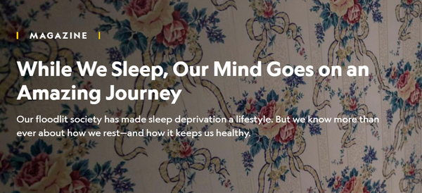 While We Sleep, Our Mind Goes on an Amazing Journey