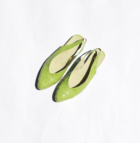 Isabel Pointed Flat Slingback