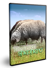 The Lord Is My Shepherd Series