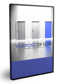 The Purpose of God Vol. 2 Series