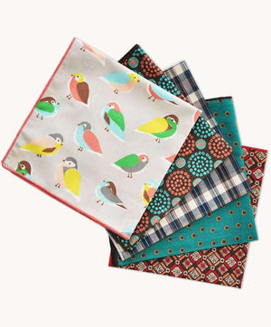Boys Handy Hanky Set