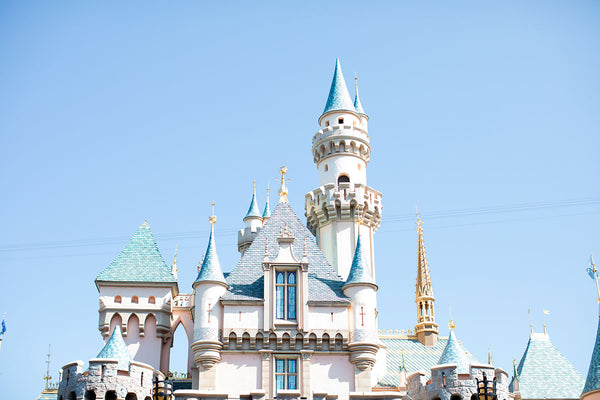 Disneyland Travel Tips + Fawny Pack Restock!