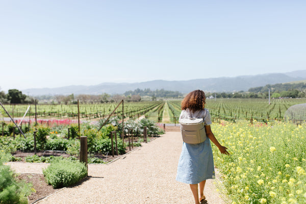 The Fawn Travel Guide to Napa Valley