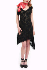 Don't I Look Smashing In My New Lace Frock Dear? Dress