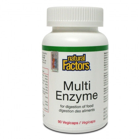 NATURAL FACTORS MULTI ENZYME 90'S