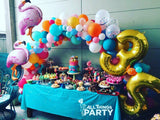 Organic Balloon Full Arch (price excludes foil balloons)
