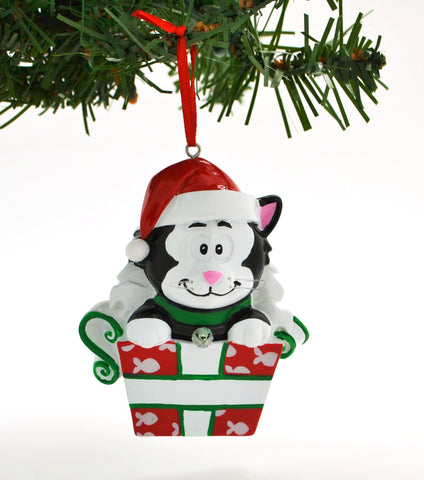 PERSONALIZED CHRISTMAS ORNAMENT PETS-ADORABLE BLACKTEN CAT IN BOX