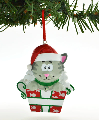 PERSONALIZED CHRISTMAS ORNAMENT PETS-ADORABLE GRAYTEN CAT IN BOX