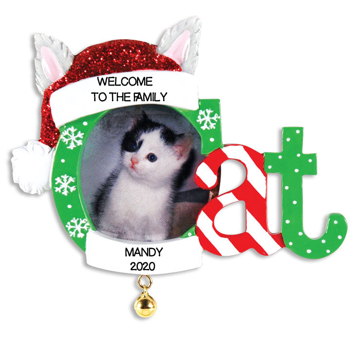 Personalized Christmas Ornaments Picture Frame- Christmas CAT Frame/CAT Christmas Picture/Personalized by Santa