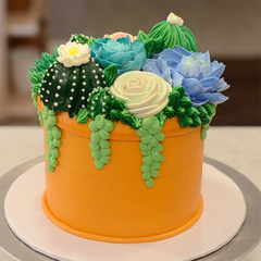 Collection 3:  Buttercream Succulent Cakes