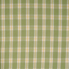 Party Linens Green Yellow White Check Checks and Plaids