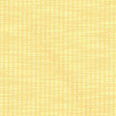 Party Linens Windsong Stripe Marigold Stripes and Polka Dots