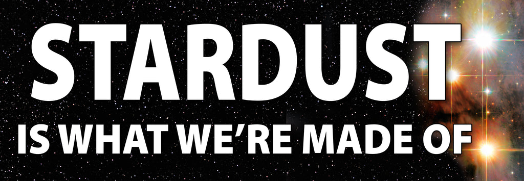 STARDUST IS WHAT WE'RE MADE OF