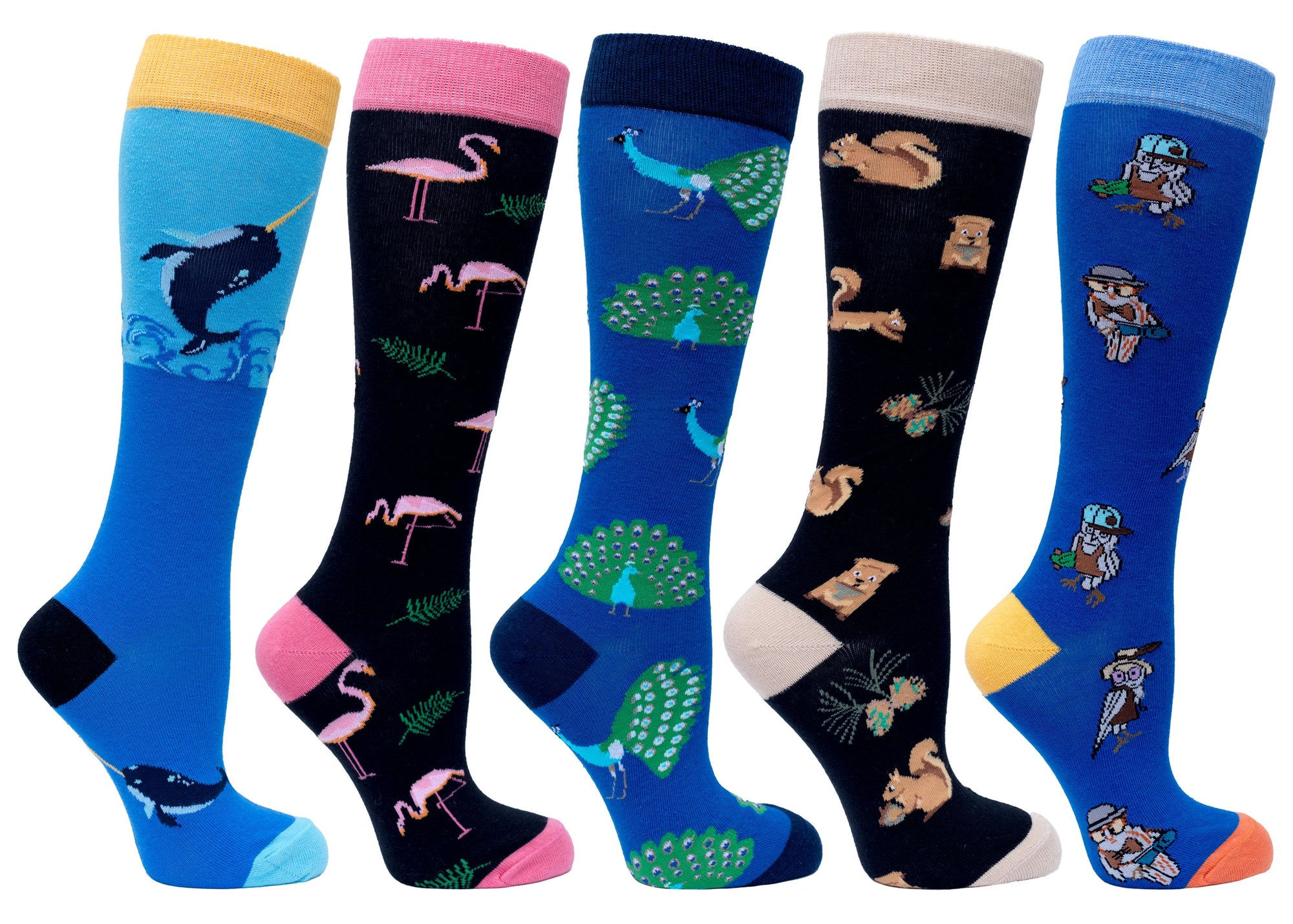 Women's Animal Planet Knee High Socks Set | 5 Pack