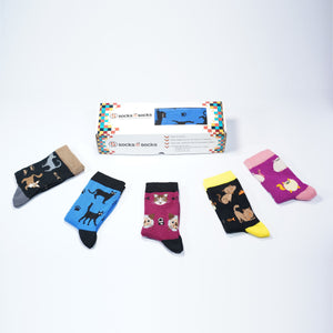 Kids Cute Cats Socks