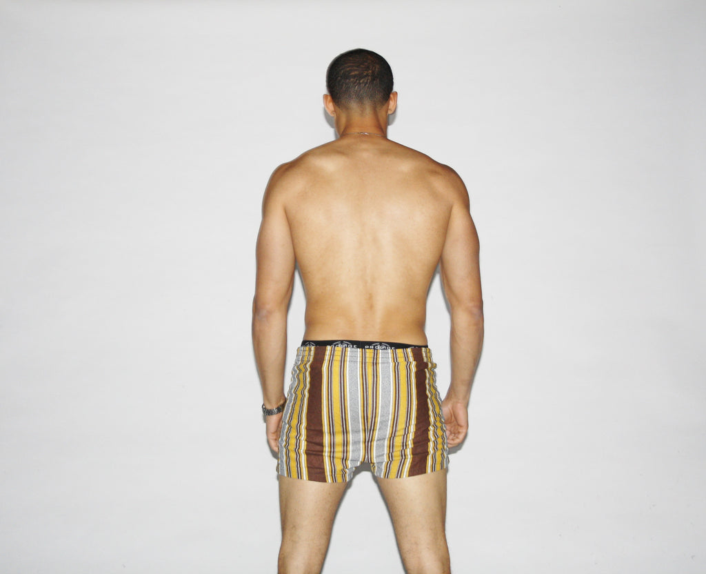 1960s Vintage Striped Swim Trunks