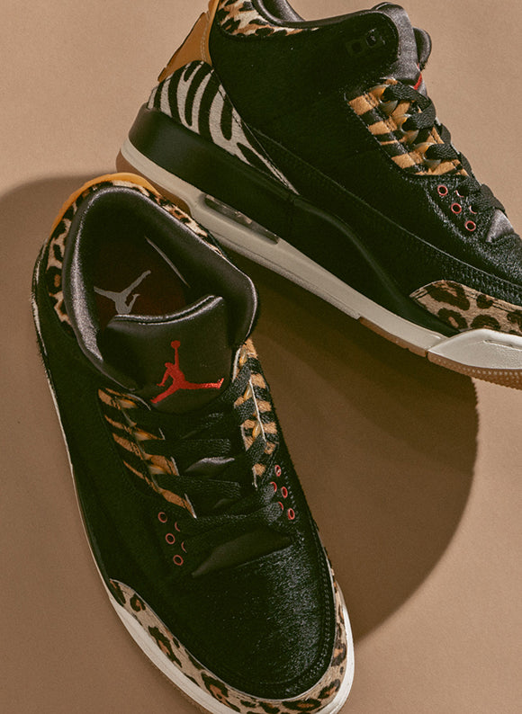 Jordan 3 Retro SE Black / Multi