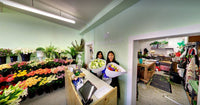 5 Reasons Why Flower Shop Florist is the Best Florist in Wellington
