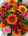 spring flowers in WINTER for delivery in Wellington New Zealand!